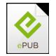 Format ePub